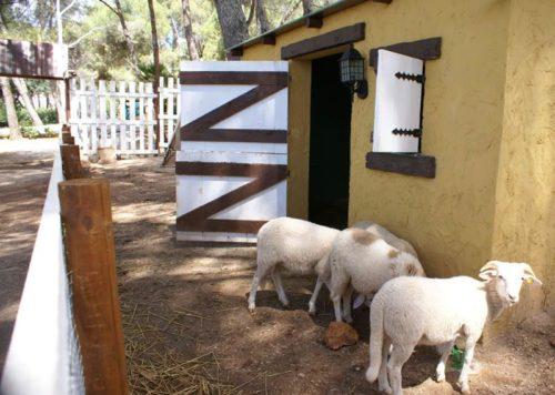 Campamento de verano en ingles en Marbella