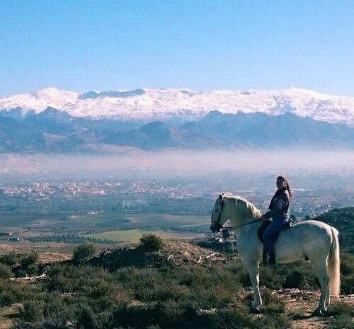 Campamento Intensivo de Equitación