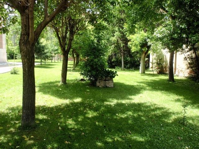 Campamento urbano en Valladolid